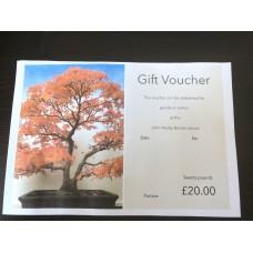 Gift voucher Twenty pounds